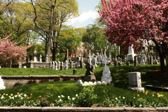 View of headstones and flowering trees